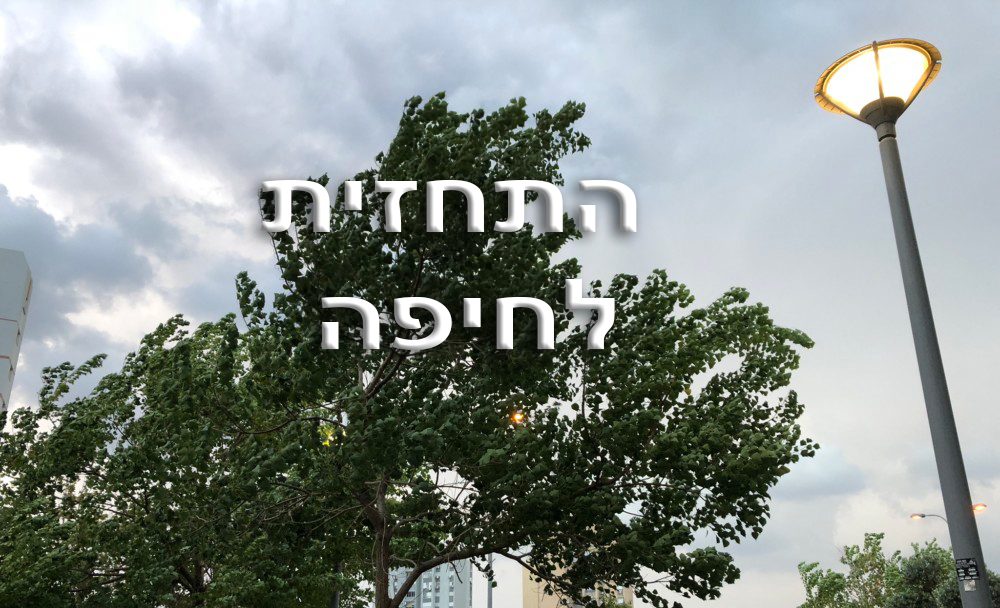 התחזית לחיפה