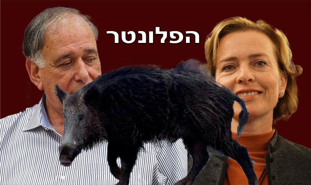 פלונטר החזירים בחיפה