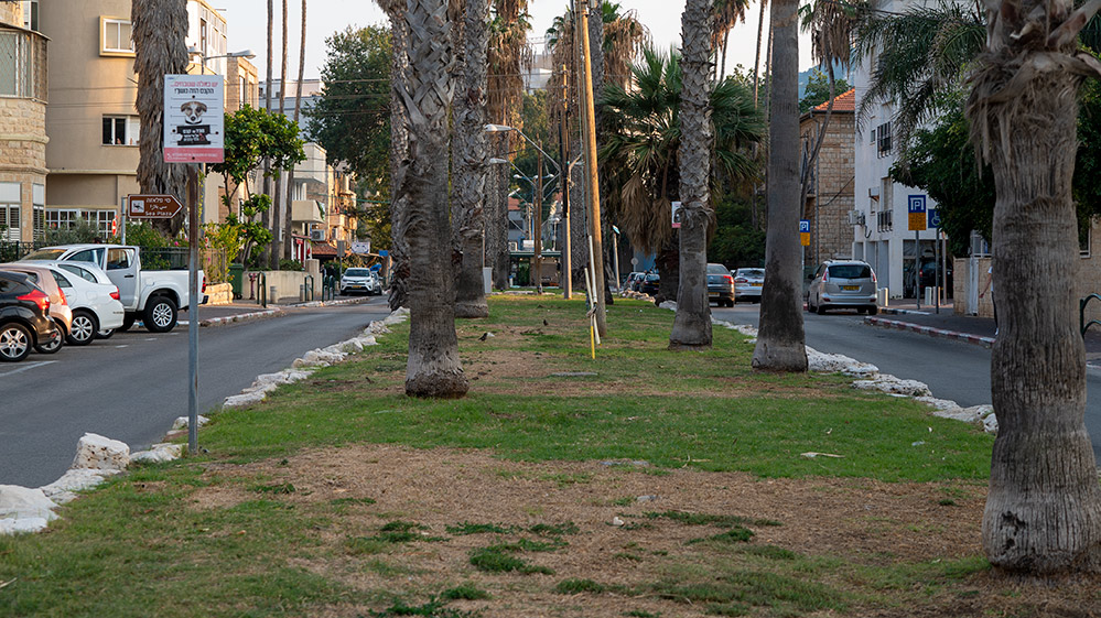 שדרות בת גלים בחיפה (צילום: ירון כרמי)
