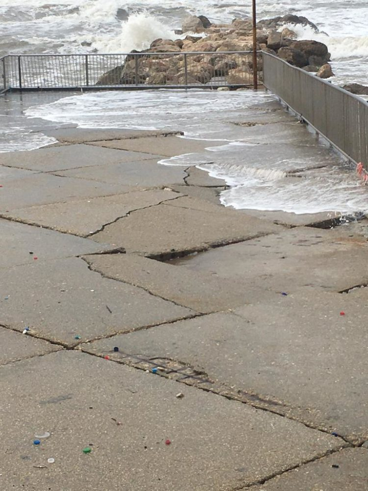 נזקי הסערה (צילום: דליה נירנפלד)