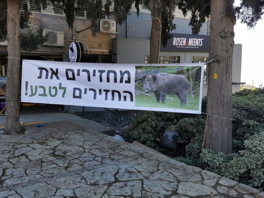 הפגנה בדרישה להחזרת החזירים לטבע בחיפה (צילום: סמר עודה)