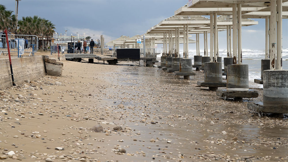 כאן הייתה פעם מדשאה • הסערה הותירה הרס רב בטיילת חוף דדו בחיפה (צילום: ירון כרמי)