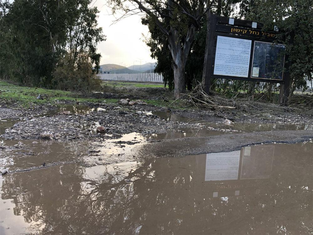 אזור הצפה - נחל הקישון גואה - קריית חרושת (צילום: ירון כרמי)