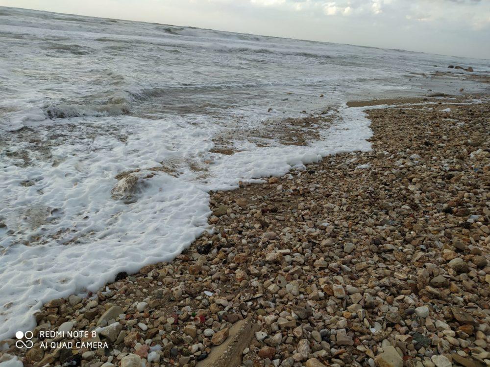 קצף בחוף הים בחיפה (צילום מוטי מנדלסון)