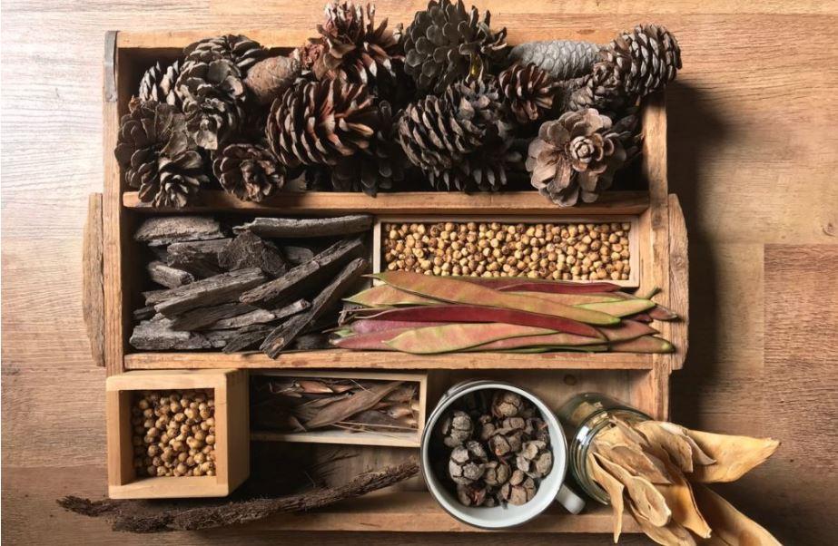 נונה אורבך הגשת חומרים חומרי טבע 2016