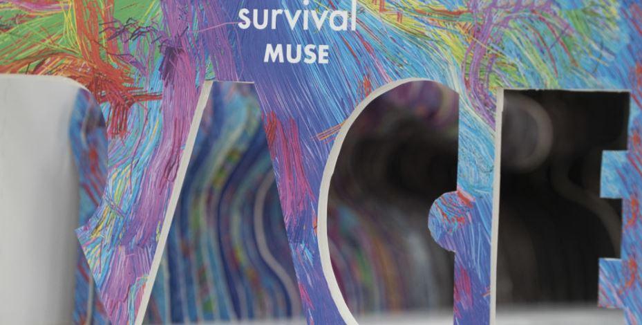 מירוץ העכברים - עבודת גמר במכללת תילתן (צילום: ירון כרמי)