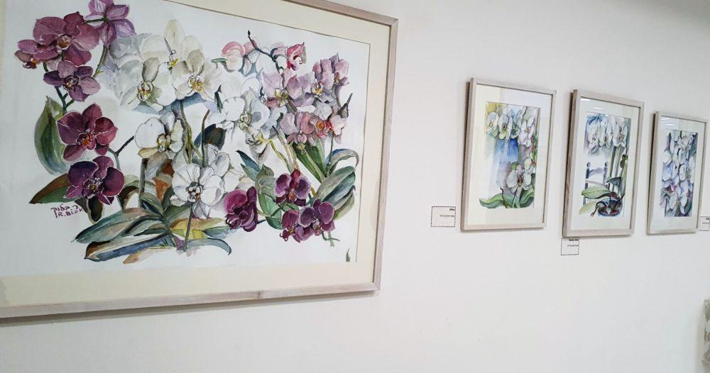 ציוריה של האוצרת רבקה וייס בלוק באקדמית גורדון (צילום: נילי בנו)