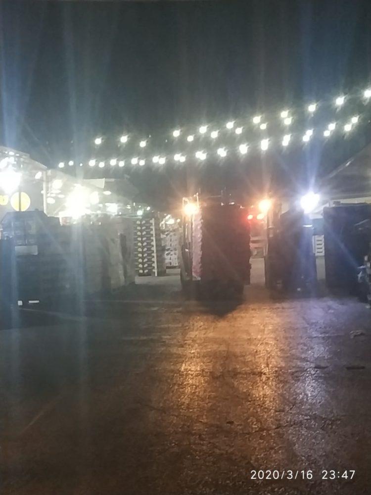 עשרות טונות של ירקות ופירות טריים התקבלו ברגעים אלה בשוק הסיטונאי בחיפה (צילום: נביל סהלי)