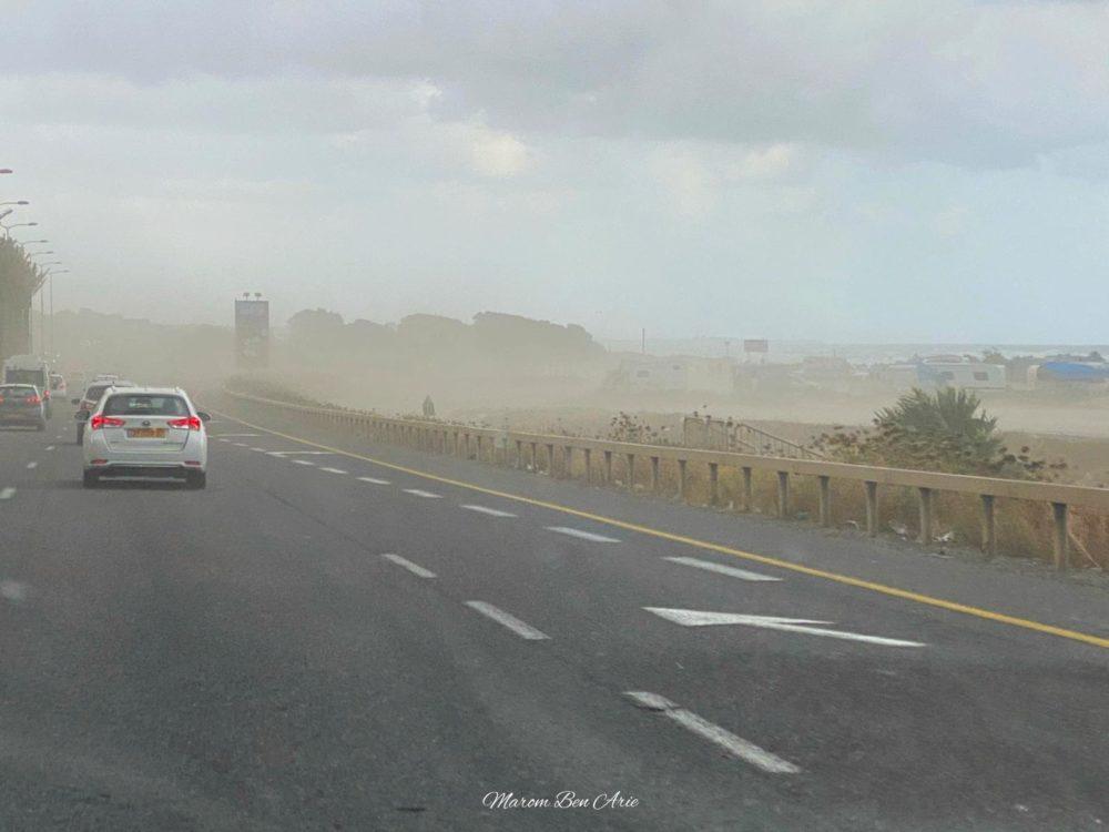 עלעול חול ביציאה הדרומית של חיפה (צילום: מרום בן אריה)