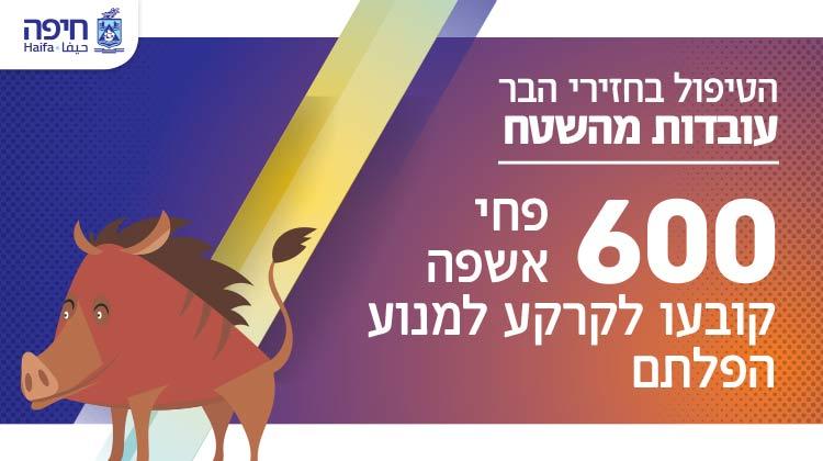 עיריית חיפה מלבני מובייל