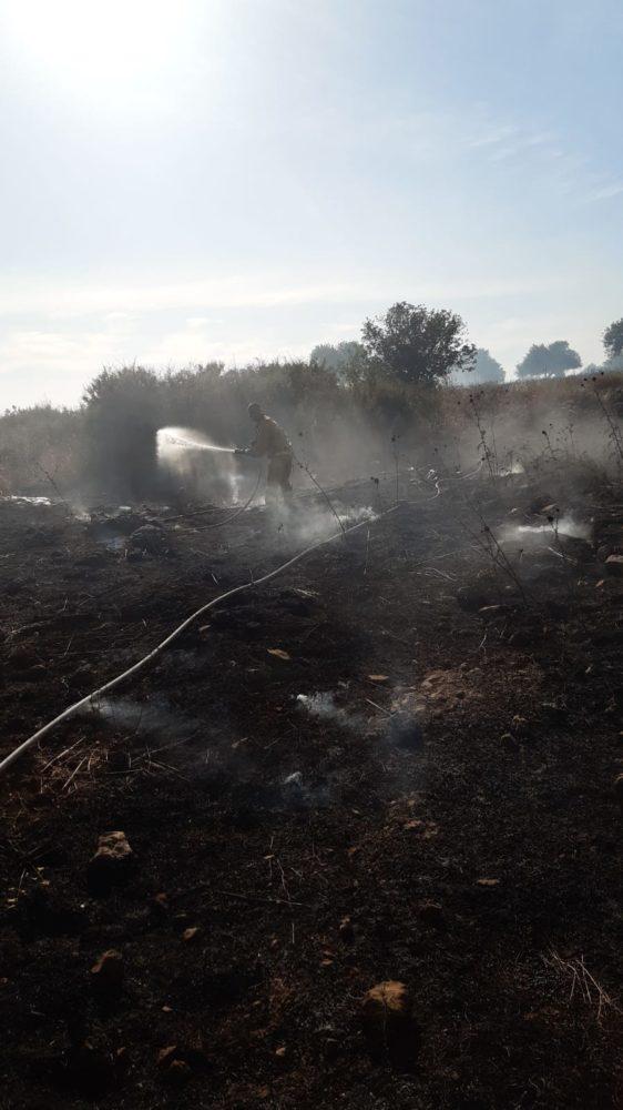 שריפה בשטח אש באזור אליקים (צילום: כבאות והצלה)