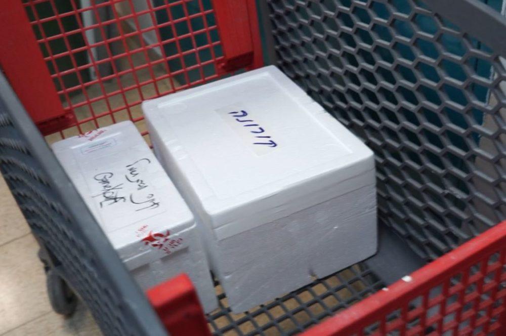 צידנית עם בדיקות קורונה • מסע מצולם במעבדת כללית בנשר (צילום: ירון כרמי)