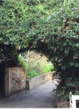 רחוב כינרת (צילום: חנה מורג)