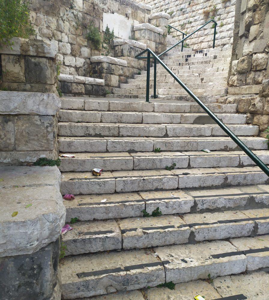 """מדרגות ושלטים (צילום: ד""""ר יריב שגיא)"""