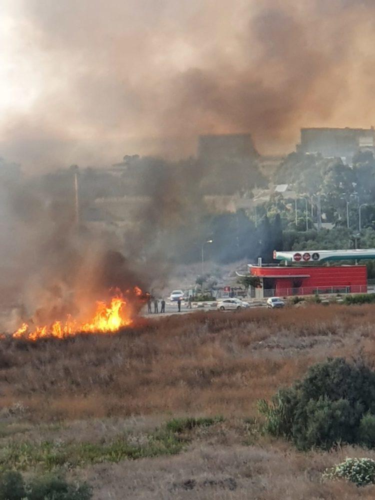 שריפה בגלי כרמל (צילום: ליאורה חזן)