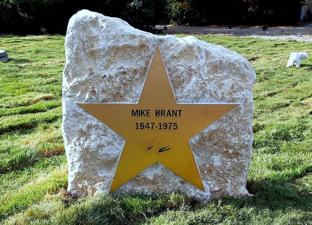 הכוכב של מייק (צילום: אדיר יזירף)