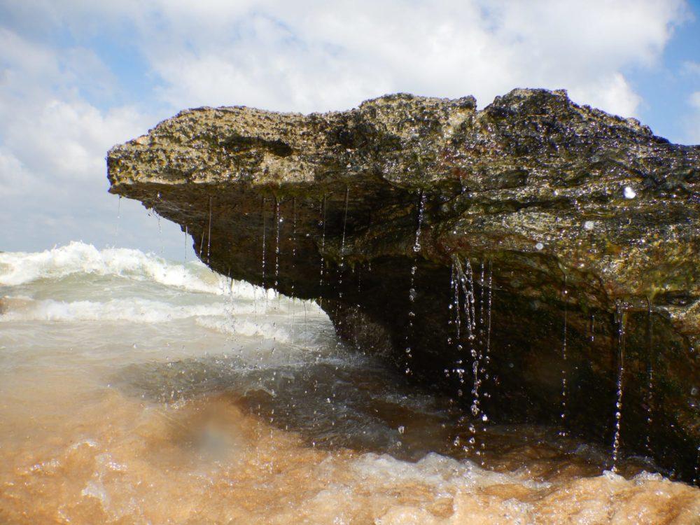 זפת בים (צילום: מוטי מנדלסון)