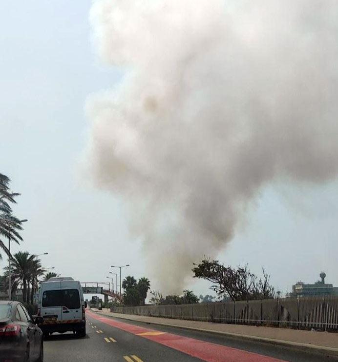 שרפת קוצים באזור פארק הכט בחיפה (צילום: שקד וינשטוק)
