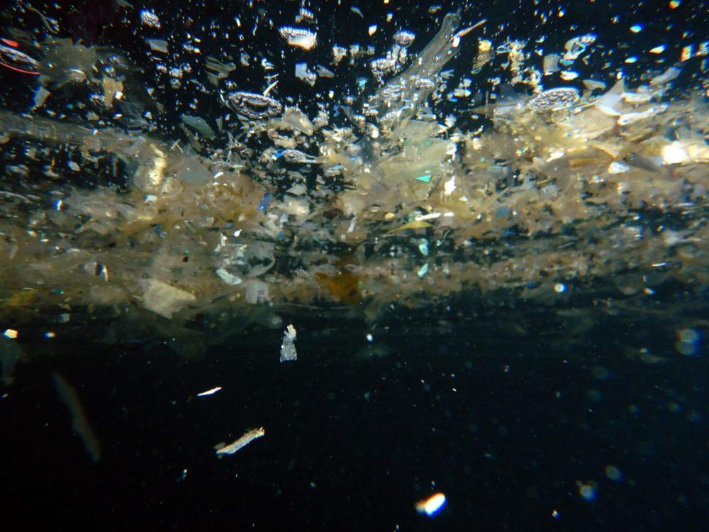 פסולת שהגיע אל הים (צילום: מוטי מנדלסון)