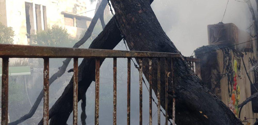 שריפה בדירה ברחוב וינגייט בחיפה, נמנעה התפשטות לחורש הסמוך (צילום: כבאות והצלה)