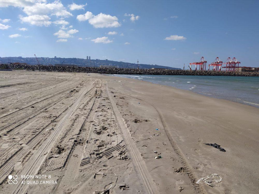 החוף לאחר שנוקה (צילום: מוטי מנדלסון)