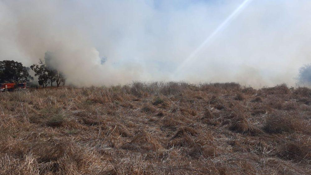 שריפה (צילום: כבאות והצלה)