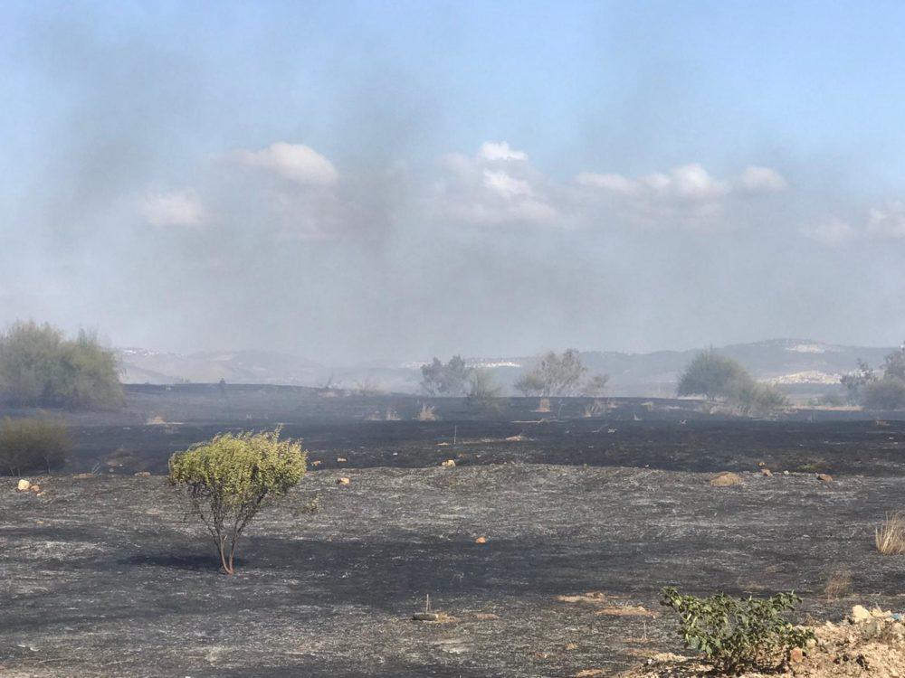 כוחות גדולים פועלים לכיבוי השריפה (צילום: כיבוי והצלה)