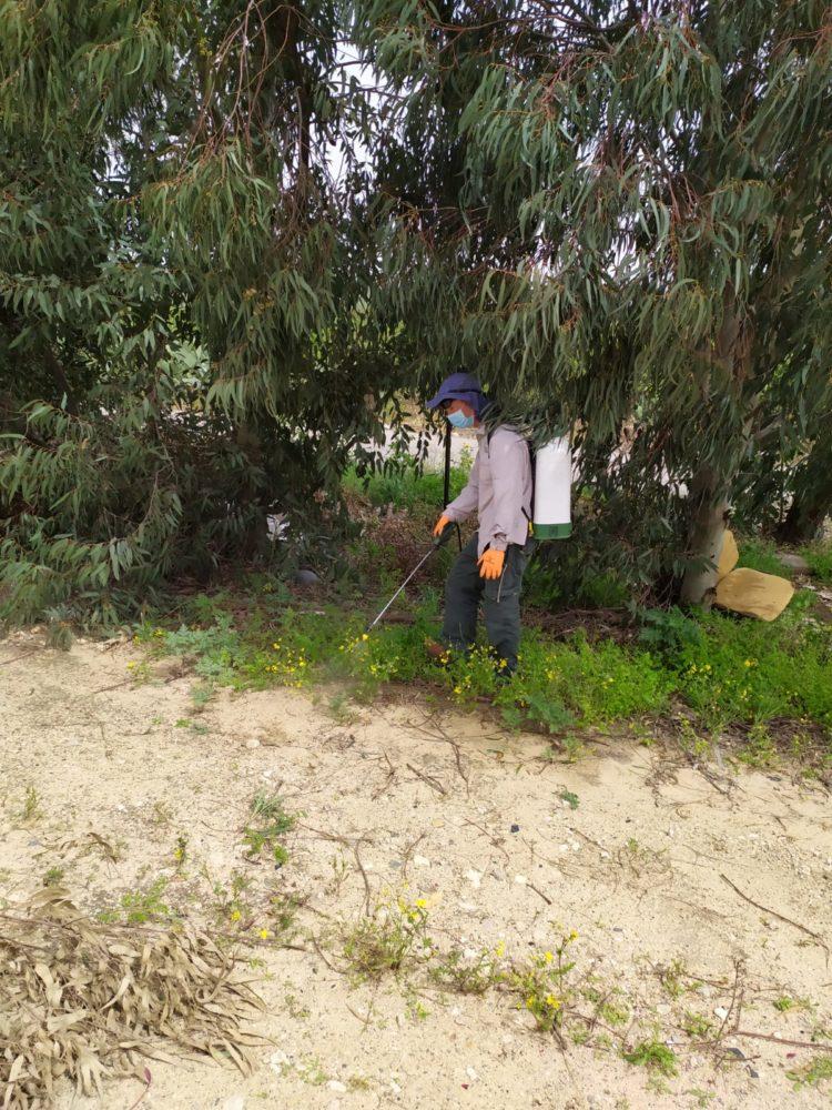 עבודות שימור בגן הלאומי קיסריה (צילום: יהונתן אורלין רשות הטבע והגנים)