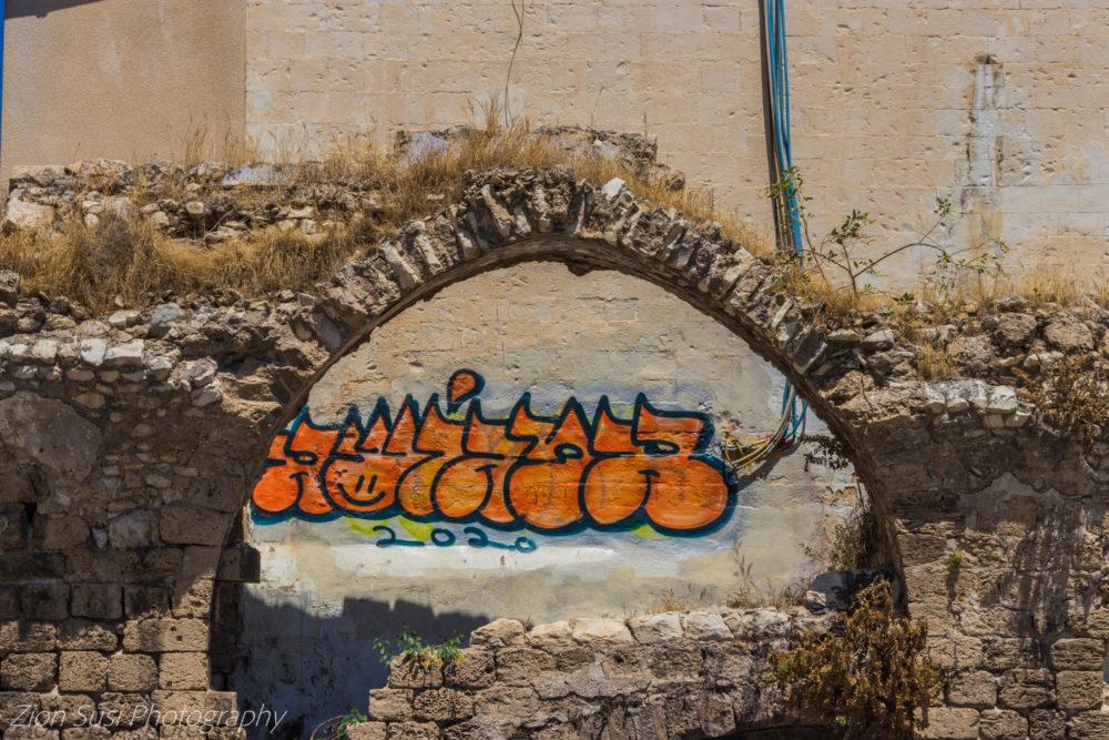 קירות מדברים בחיפה (צילום: גרין ליידי)