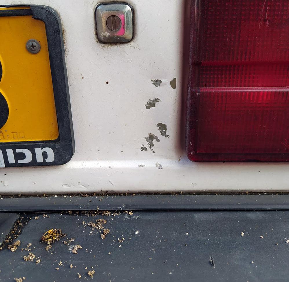 רכב שנפגע מאבן של קבצן בכרמל הצרפתי (צילום: חי פה)