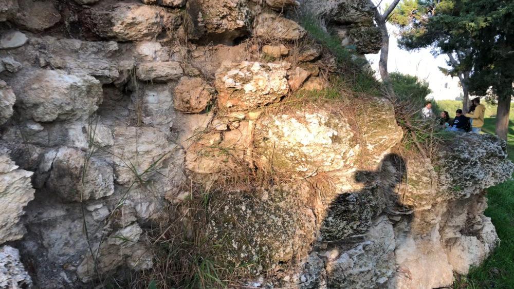 בני נוער מטיילים - מצודת ראש מיה (צילום: ירון כרמי)