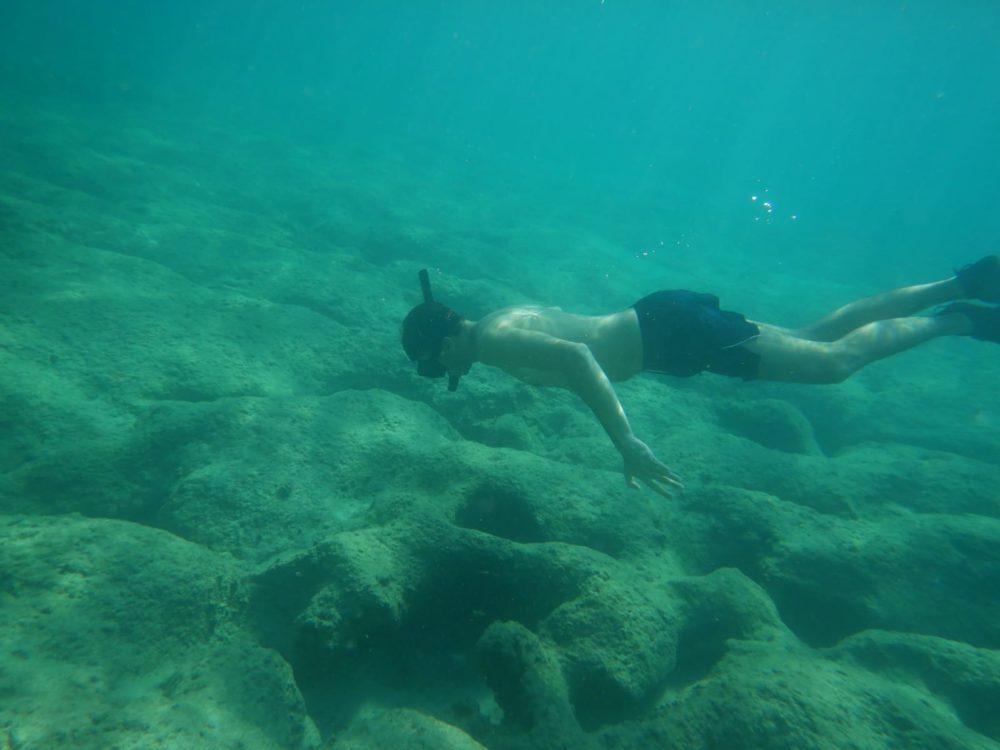 צלילה בחופי חיפה בסתיו - שמורת שיקמונה (צילום: ירון כרמי)