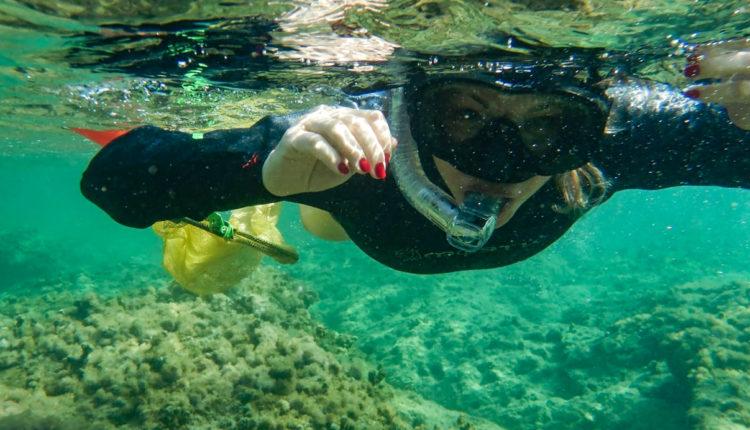 נגה כרמי – צלילה בחופי חיפה בסתיו – צילומי וידאו מרהיבים משמורת שיקמונה (צילום: ירון כרמי)
