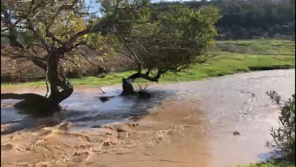 זרימה חזקה בנחל ציפורי במערכת הגשם 21/11/20 (צילום: צילום: רשות ניקוז ונחלים קישון)