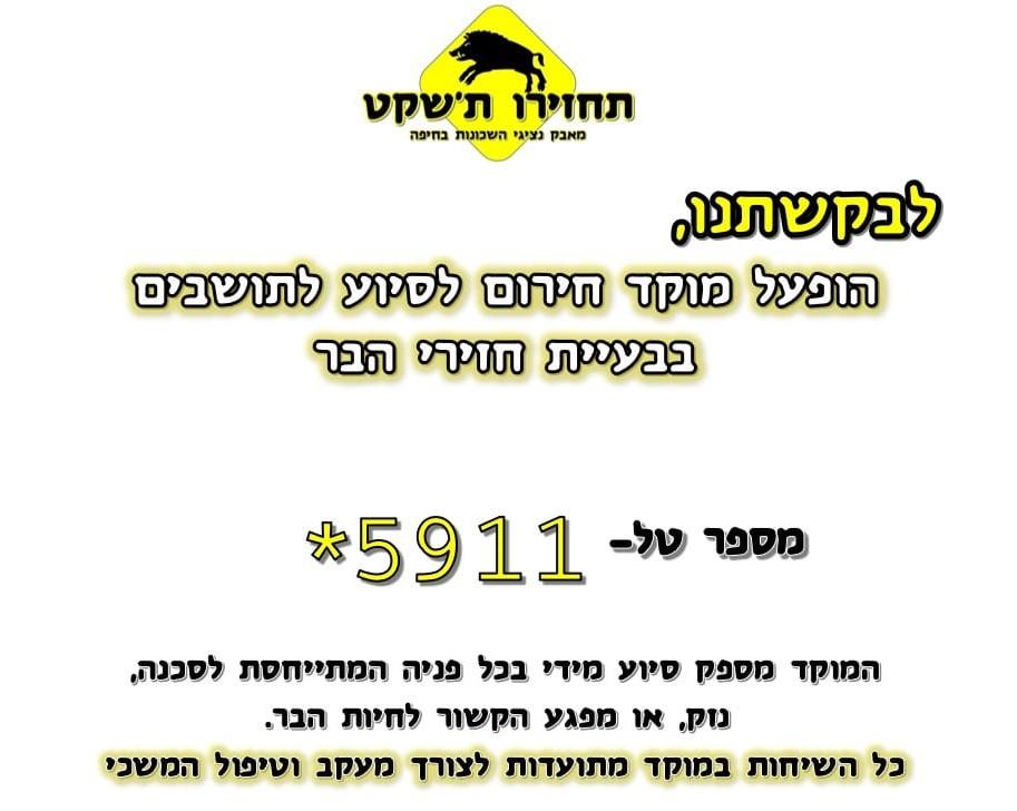 """מוקד לטיפול בחזירי בר בחיפה (צילום: """"מחזירים את החזירים לטבע"""")"""