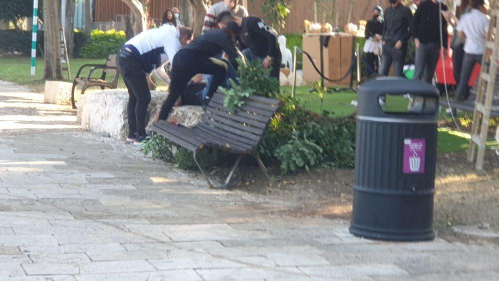 נפילה מעץ בטיילת לואי