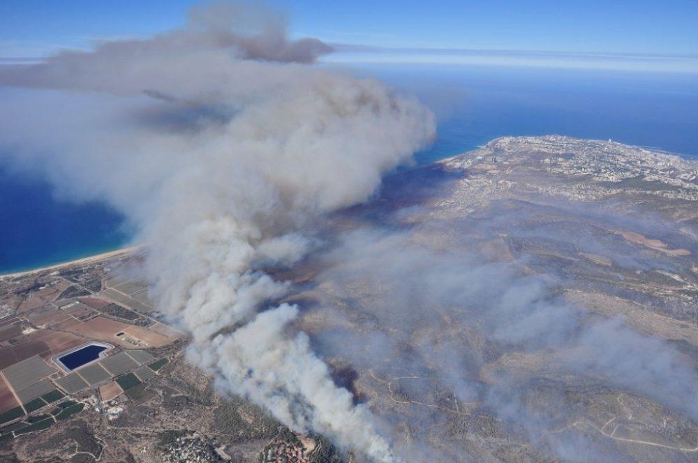 עשור לשרפה בכרמל (צילום: תערוכה קיבוץ בית אורן)