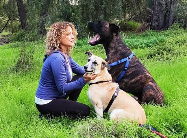 הילה לאופר והכלבים (אלבום פרטי)