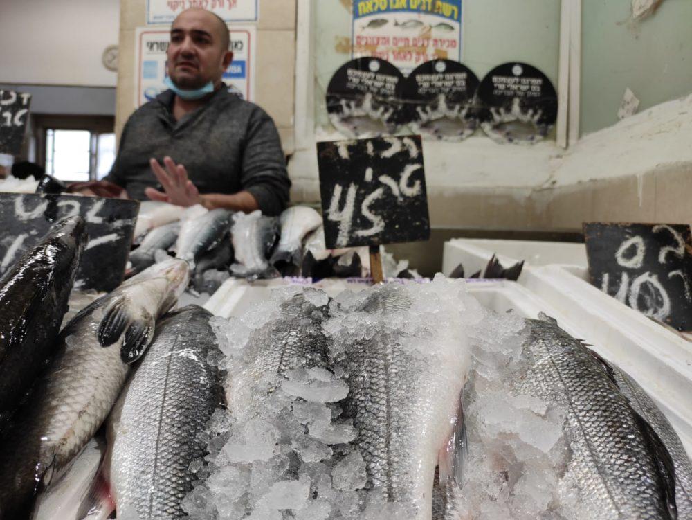 דגים • שוק תלפיות בחיפה (צילום: גלעד שטיין)
