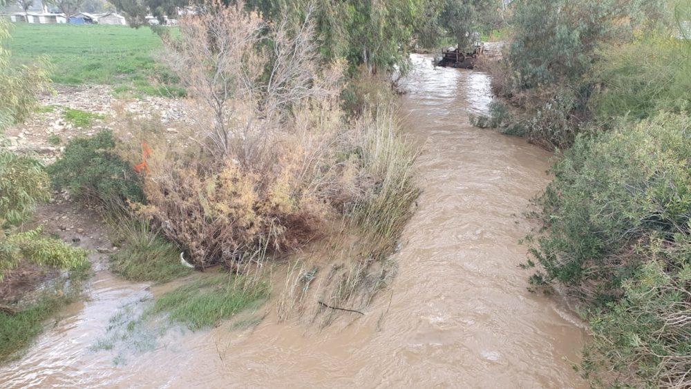 רימות חזקות בנחל הקישון (צילום: יוסי סורוג'ון, רשות נחל הקישון)
