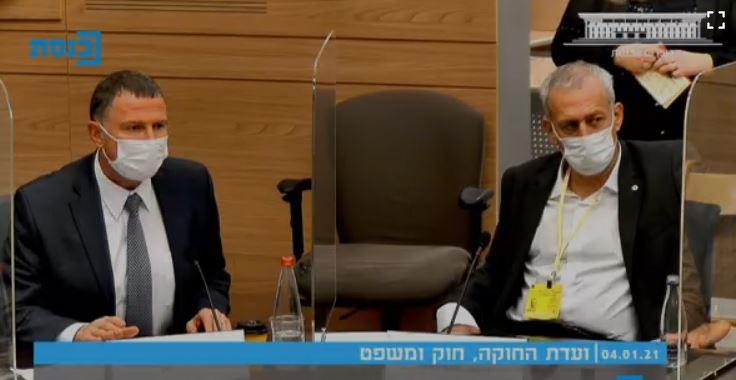 פרופ' אש ויולי אדלשטיין   דיון בוועדת החוקה בכנסת (צילום מסך: דוברות הכנסת)