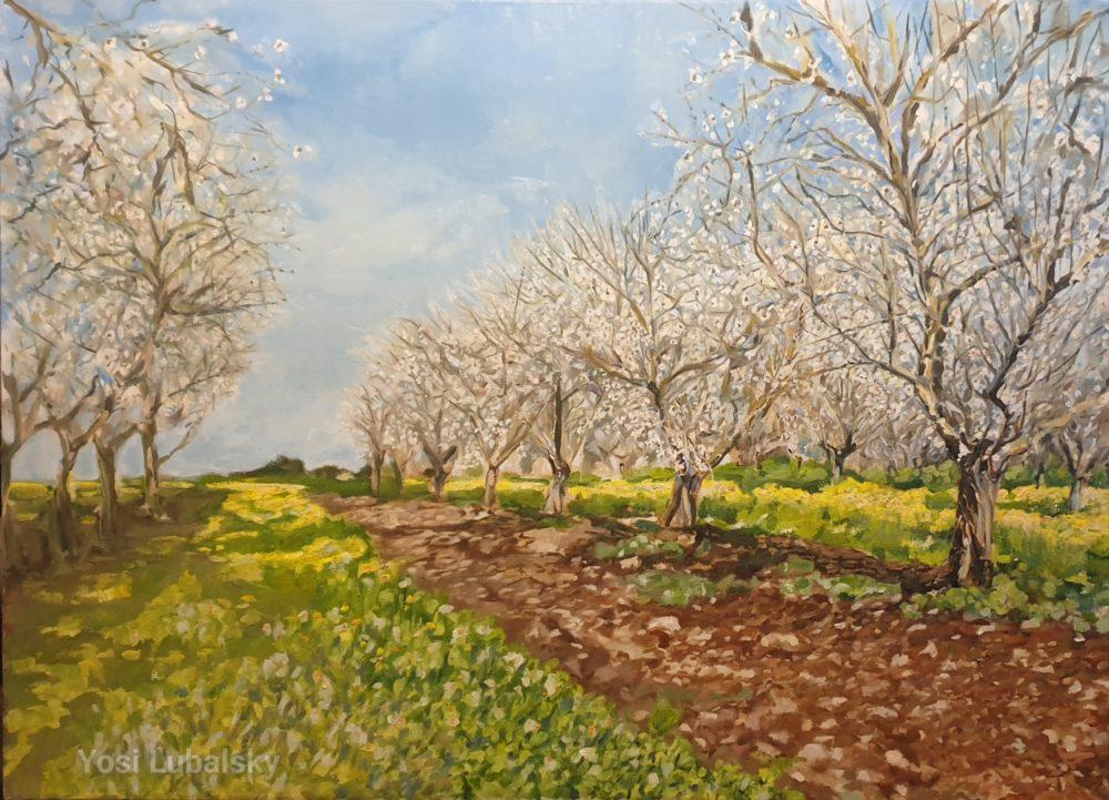 """מטע שקדיות בעמק, שמן על בד 110/80 ס""""מ (ציור: יוסי לובלסקי)"""