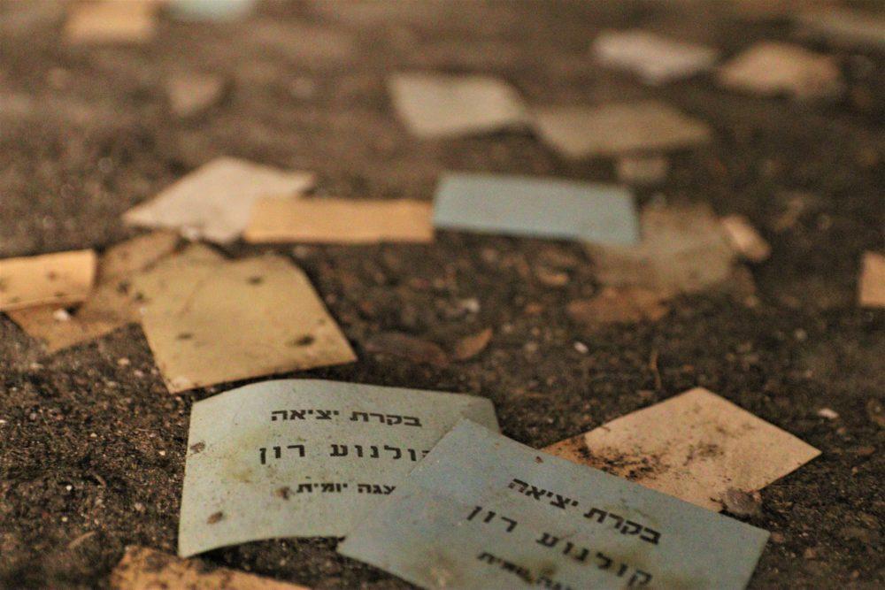 קולנוע רון - פיל לבן בחיפה - רסיסי נוסטלגיה (צילום: עומר מוזר)