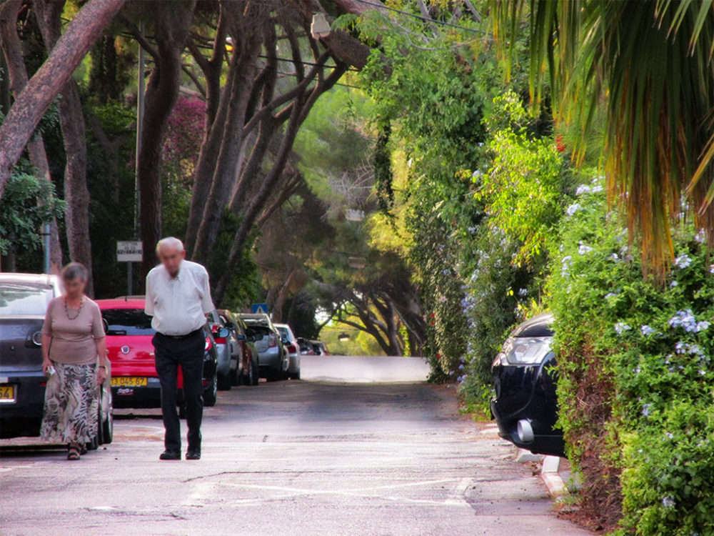 שדרות הצבי בחיפה (צילום: ירון כרמי)