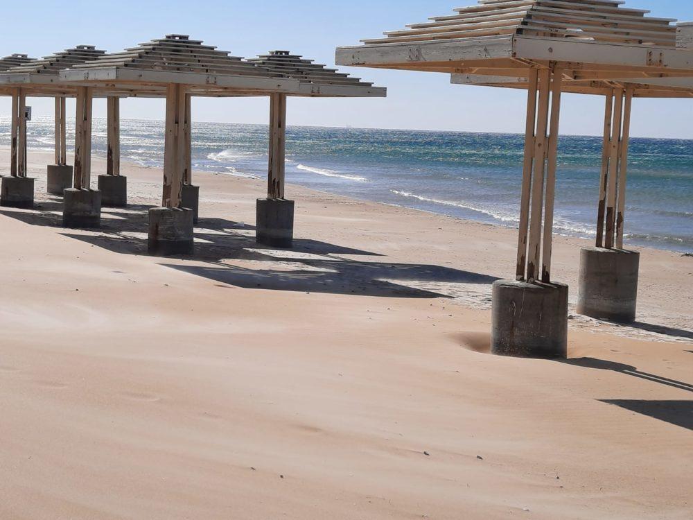 חוף הים (צילום: שושי קופל)