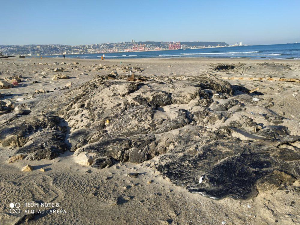 אסון הזפת בחופים (צילום: מוטי מנדלסון)