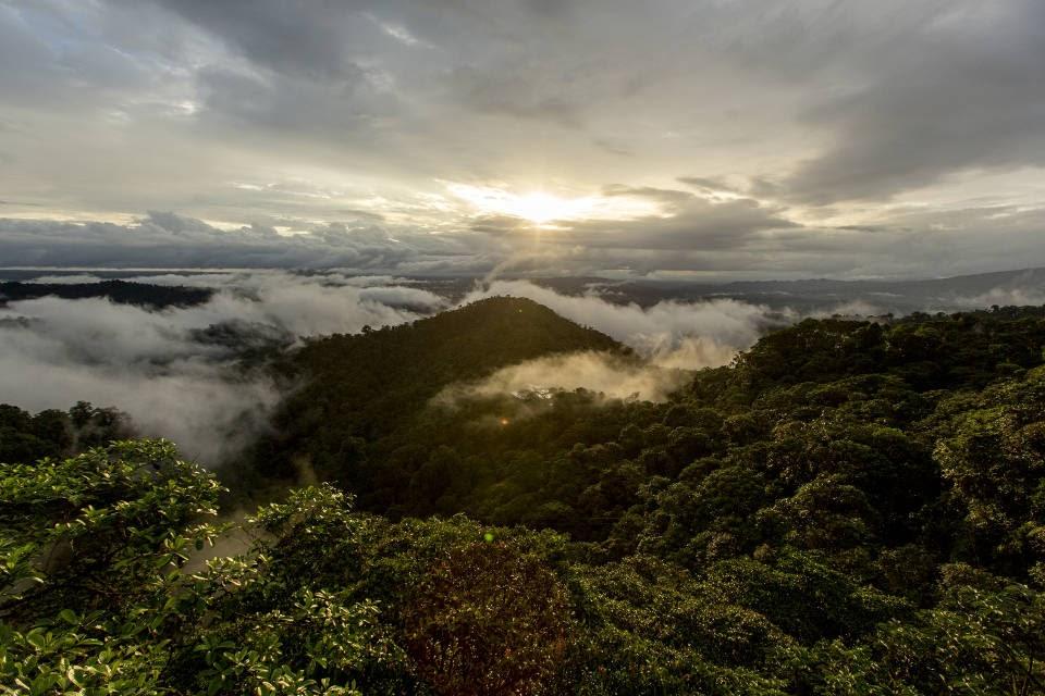 מצילים את אקוודור (צילום: ליאו בק, TIME)