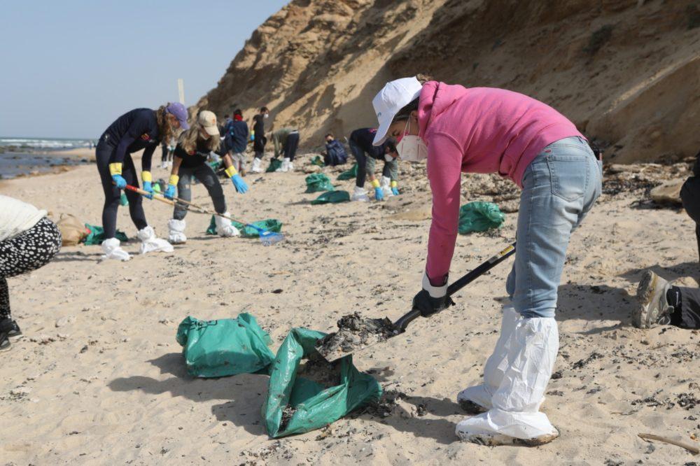 פעילות מתנדבים עם רשות הטבע והגנים בניקוי ופינוי הזפת (צילום: דפנה בן נון)