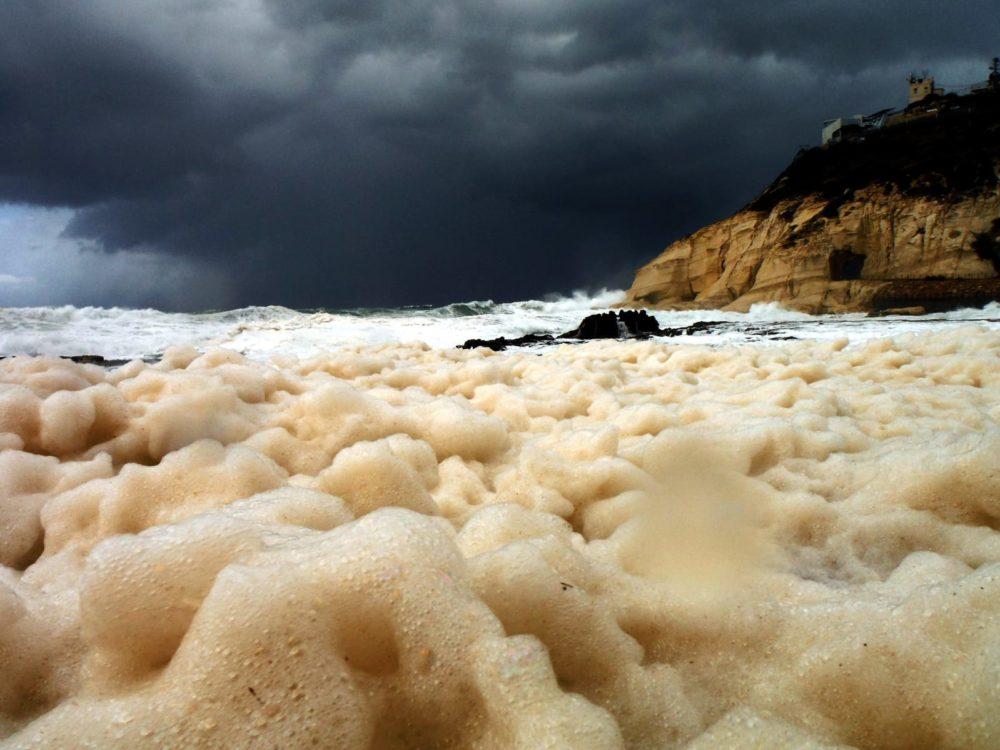 סערה בחיפה (צילום: מוטי מנדלסון)