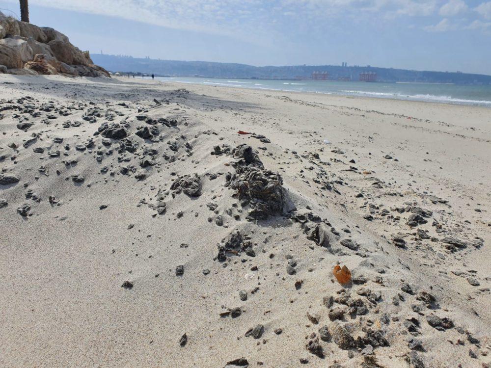 חוף קריית ים (צילום: עיריית קריית ים)